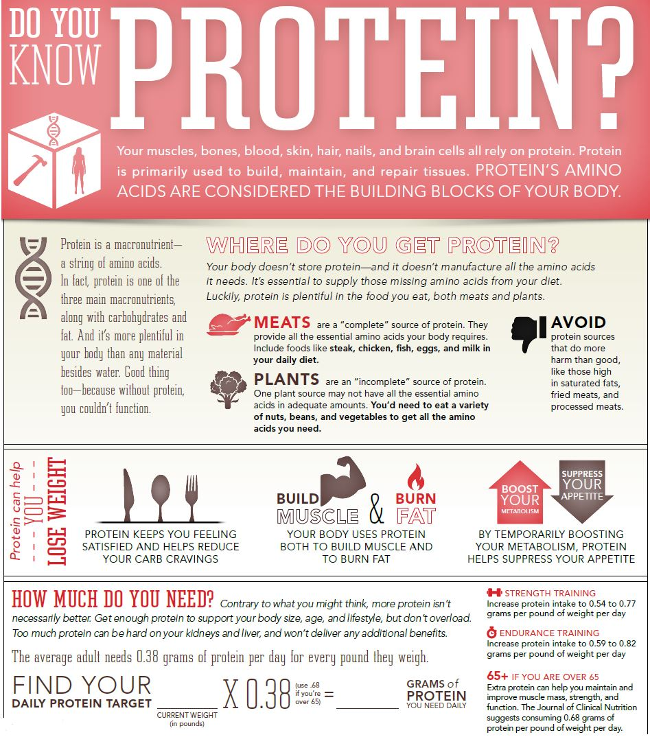 Protein-Infographic
